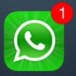 WhatsApp adaugă funcția de stream video