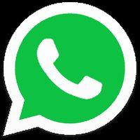 WhatsApp pentru iOS suportă acum GIF-urile
